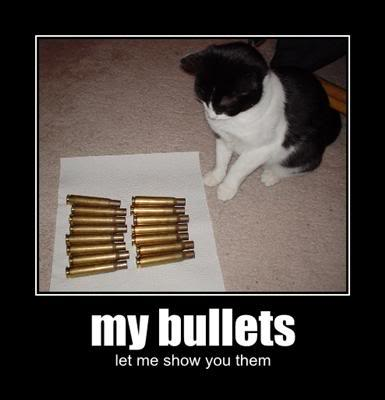 LOLcat My Bullets