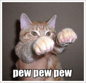 lol cat pew pew