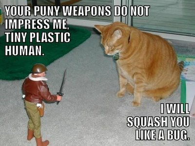 LOLcat Puny Weapons