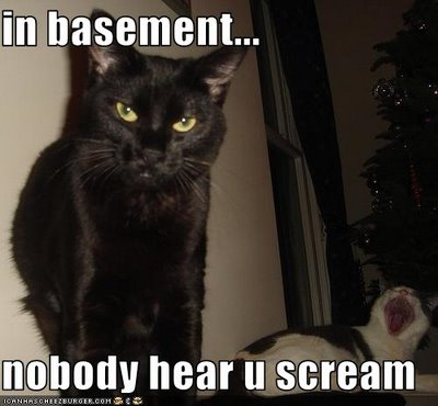 LOLcat: In Basement, Nobody Hear You Scream