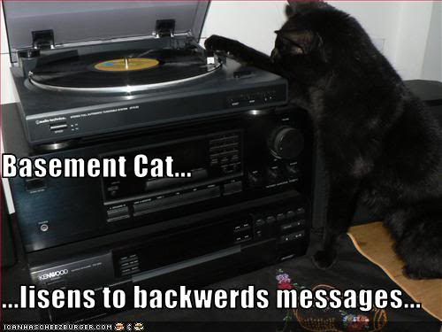 LOLcat: Basement Cat Listens To Backwards Messages