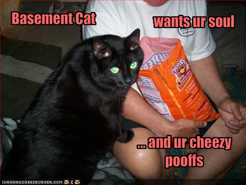 LOLcat: Basement Cat wants your soul and your cheese snacks