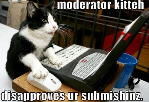 LOLcat: Moderator Kitteh disapproves your submissions